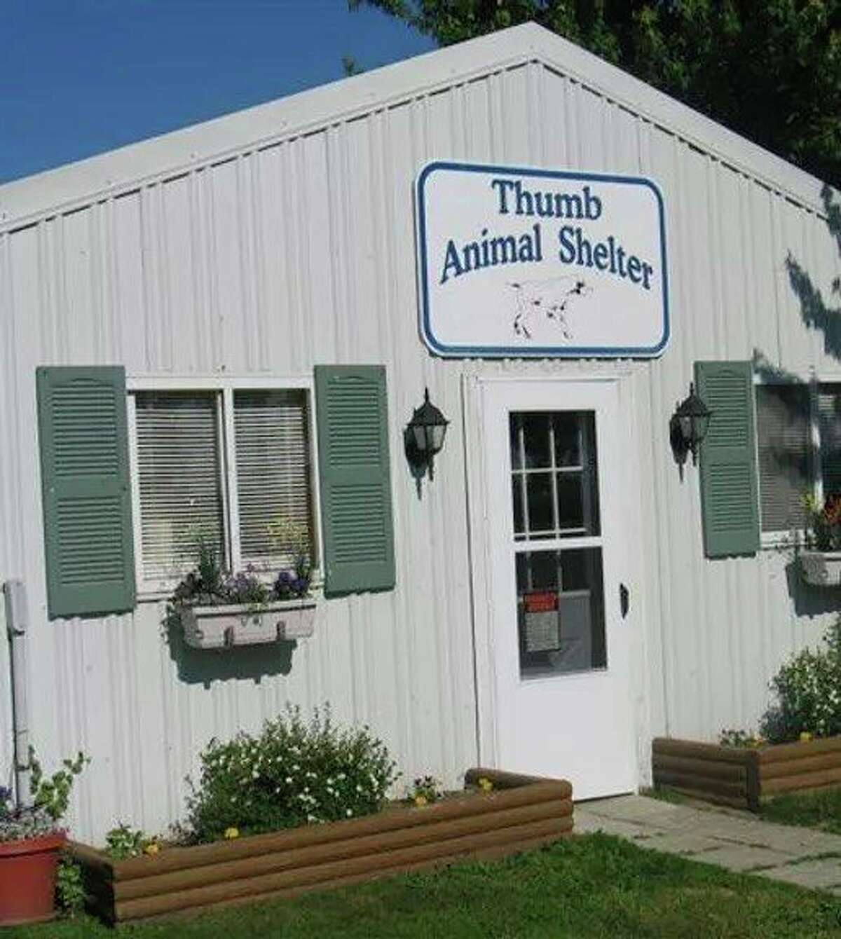 The Thumb Animal Shelter in Elkton. Huron County is working on a new contract with the shelter to help the stray dogs of the county. (Tribune File Photo)