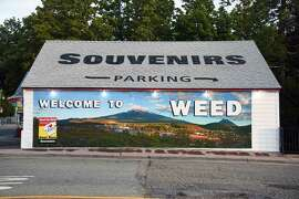 The town of Weed derives its name from the founder of the local lumber mill and pioneer Abner Weed in 1897.