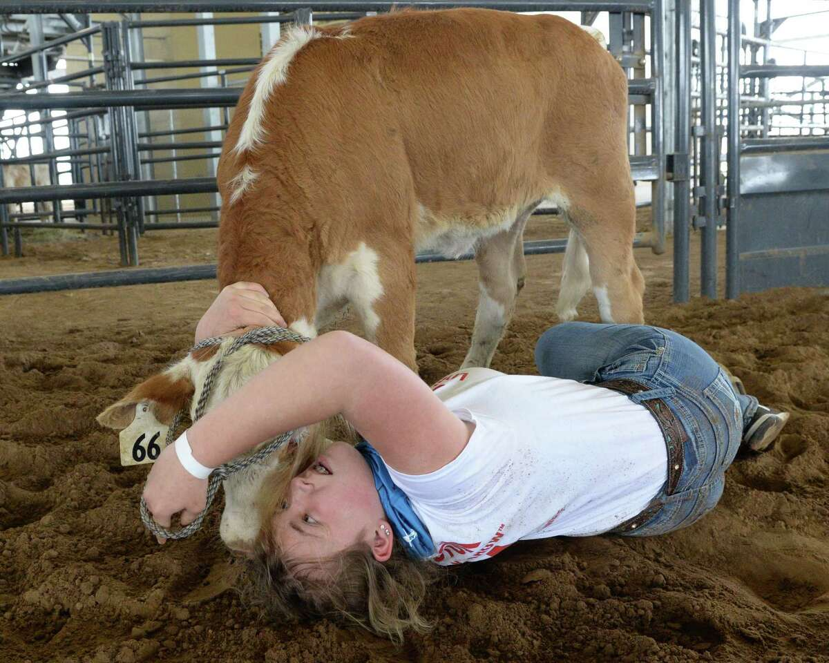 Katelyn Murphy of the Gainesville FFA wrangles a calf during the 2021 Houston Livestock Show and Rodeo Calf Scramble at the Gerald D. Young Agricultural Sciences Center in Katy on Saturday, April 17.