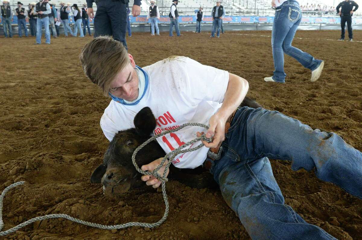 Austin Blagg of the Frisco Centennial FFA wrangles a calf during the 2021 Houston Livestock Show and Rodeo Calf Scramble at the Gerald D. Young Agricultural Sciences Center in Katy on Saturday, April 17.
