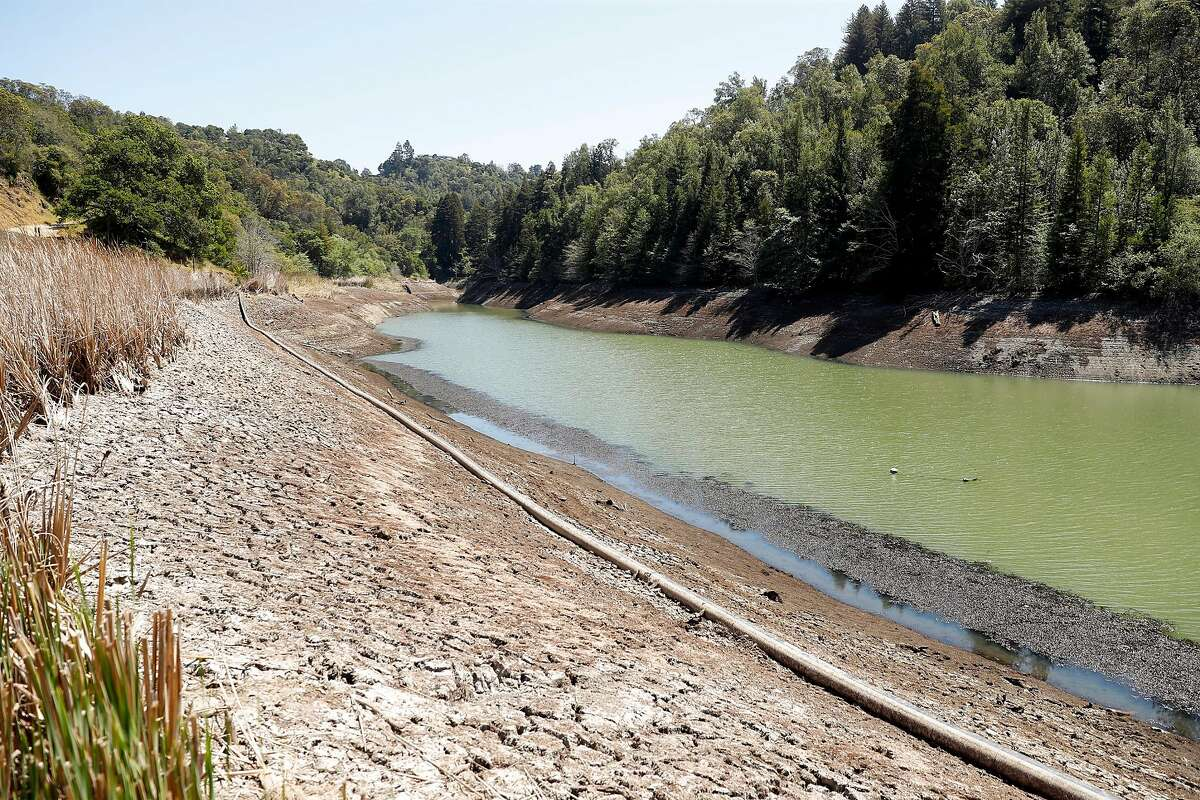 The water level is historically low at Phoenix Lake, one of Marin Municipal Water District's seven reservoirs.