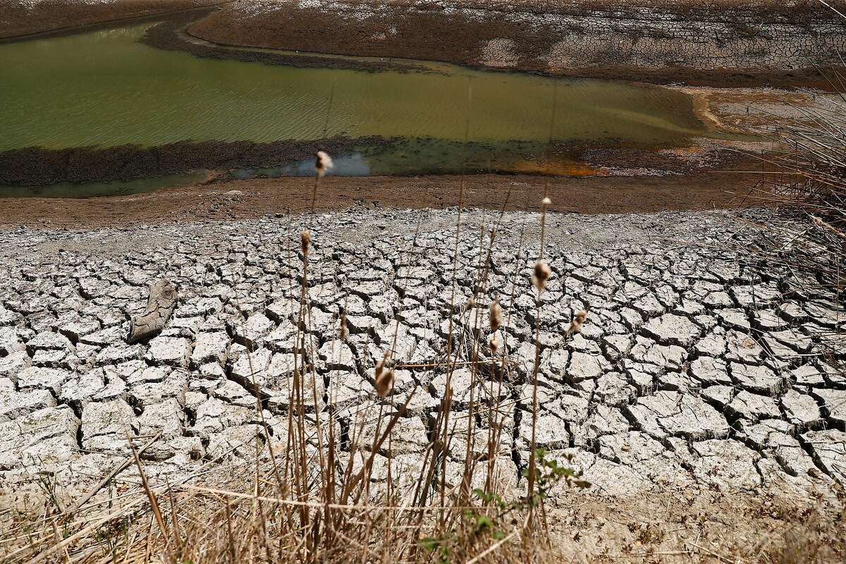 Cracked soil along the shore of Phoenix Lake in Kentfield. Water restrictions have been imposed in Marin County.
