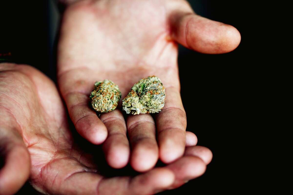 The ColonieTown Board unanimously voted to ban on-site marijuana consumption venues last week.
