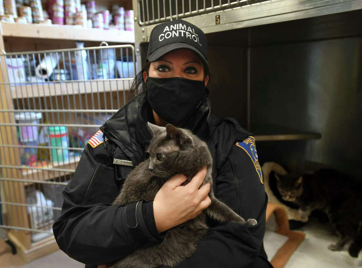 Animal Control Officer Michelle DeAngelo with mother and daughter cats Violet and Azalea, available for adoption at the Shelton Animal Shelter in Shelton, Conn. on Tuesday, April 20, 2021.