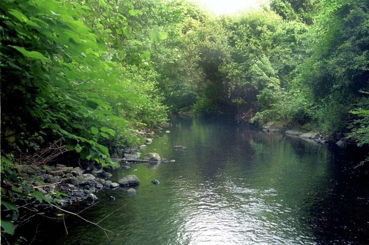 The Norwalk River behind Silvermine Elementary School in Norwalk.