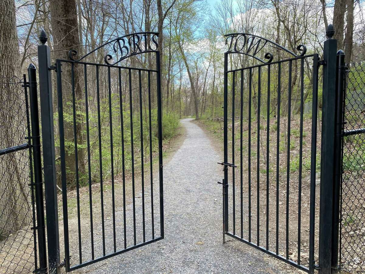 The town will be replacing wooden walkways at Bristow Sanctuary and Wildwood Preserve near Mead Memorial Park in New Canaan. The picture was taken April 22, 2021.
