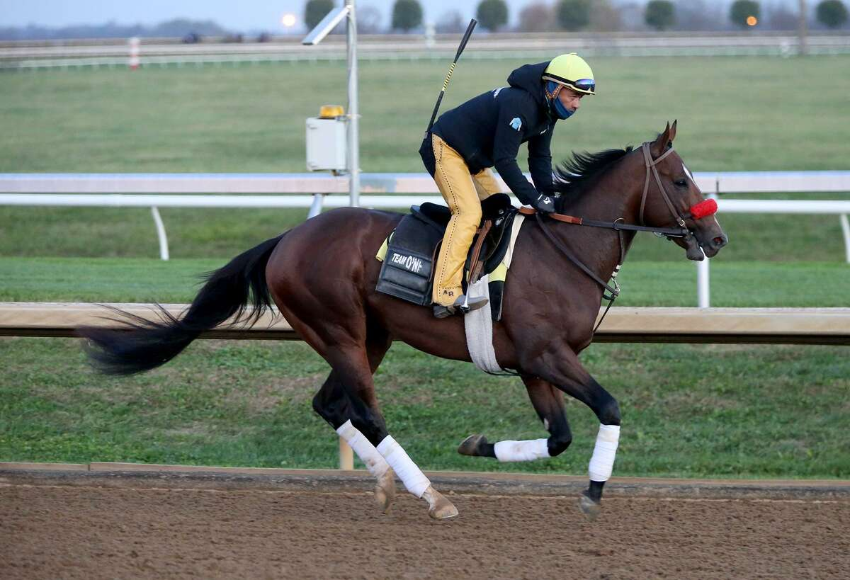 Hot Rod Charlie has earned a spot in this year's Kentucky Derby.