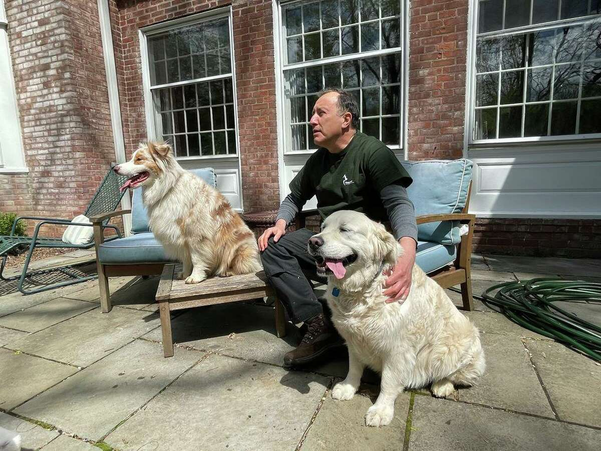 Leonard Young, who has been instrumental in fundraising efforts for a municipal animal shelter, with Naika, left and Suki, right, dogs he walks regularly in Hamden, April 22, 2021.