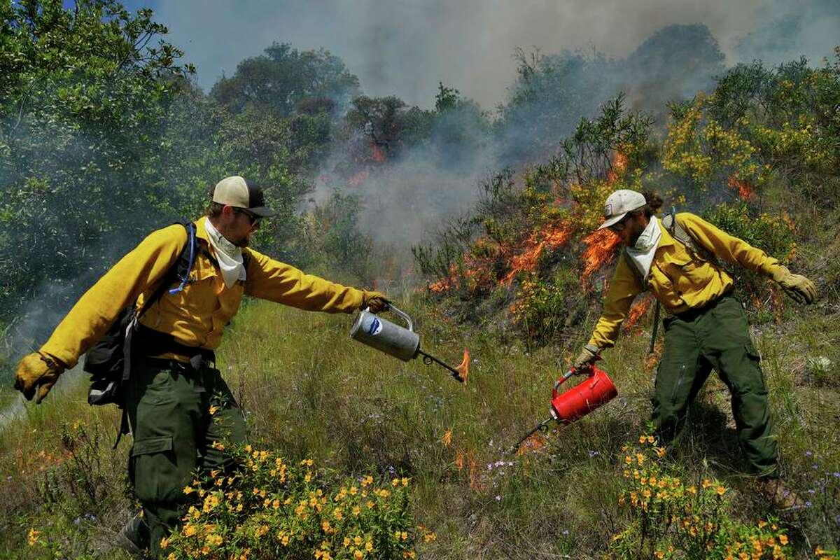 Volunteers Joe Plaugher (left) and Devyn Friedfel burn vegetation as a wildfire preventive measure in Healdsburg.