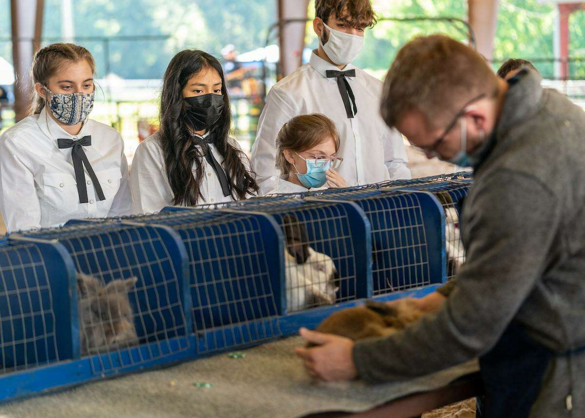 Spring ISD students were able to show their animals and projects during the in-person Spring Livestock Show & Fair - a three-day event at Nagy Pavilion that started Thursday, April 22, 2021.