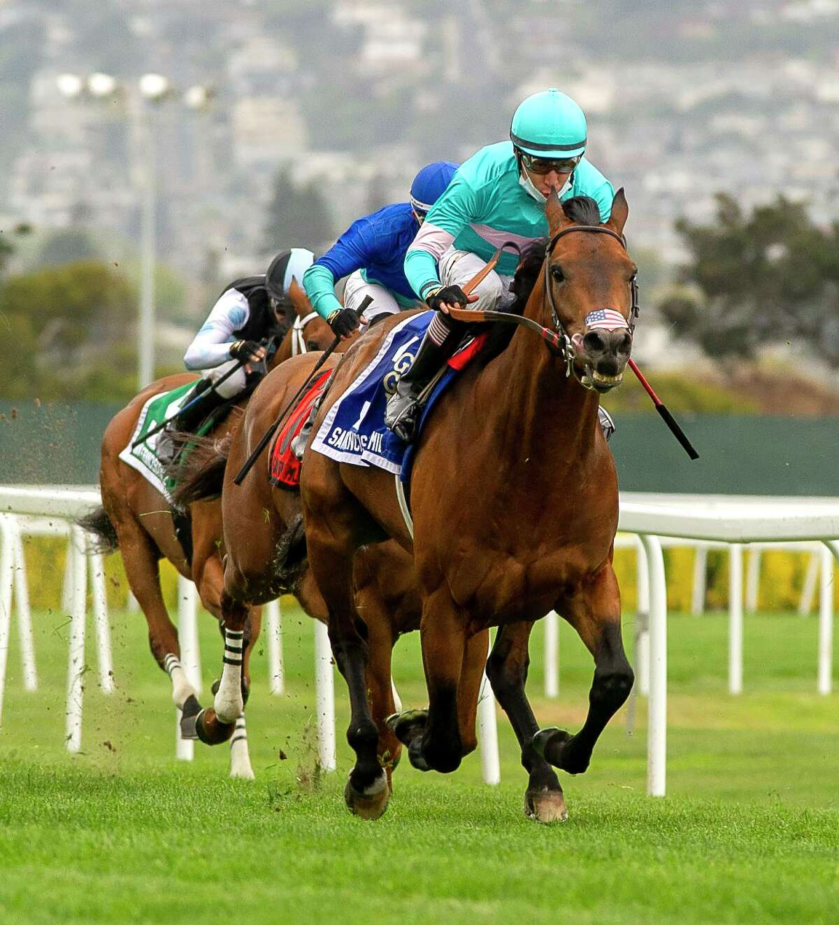 Whisper Not, with jockey Giovanni Franco aboard, races toward a victory in the San Francisco Mile at Golden Gate Fields on Saturday. He finished with a time of 1:35.94.