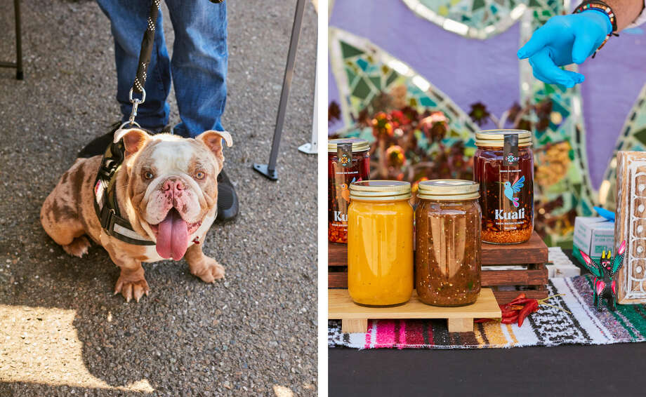 Bullet Guzman, the dog at the Kuali pop-up in Oakland on April 17.