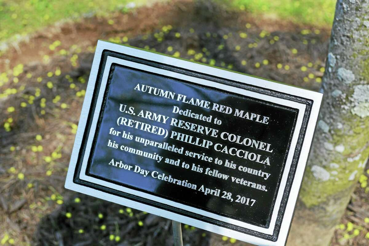 The city of Middletown marked Arbor Day in 2017 by planting two red maple trees in honor of veterans Larry Riley and Phil Cacciola at Veterans Memorial Green on Washington Street.