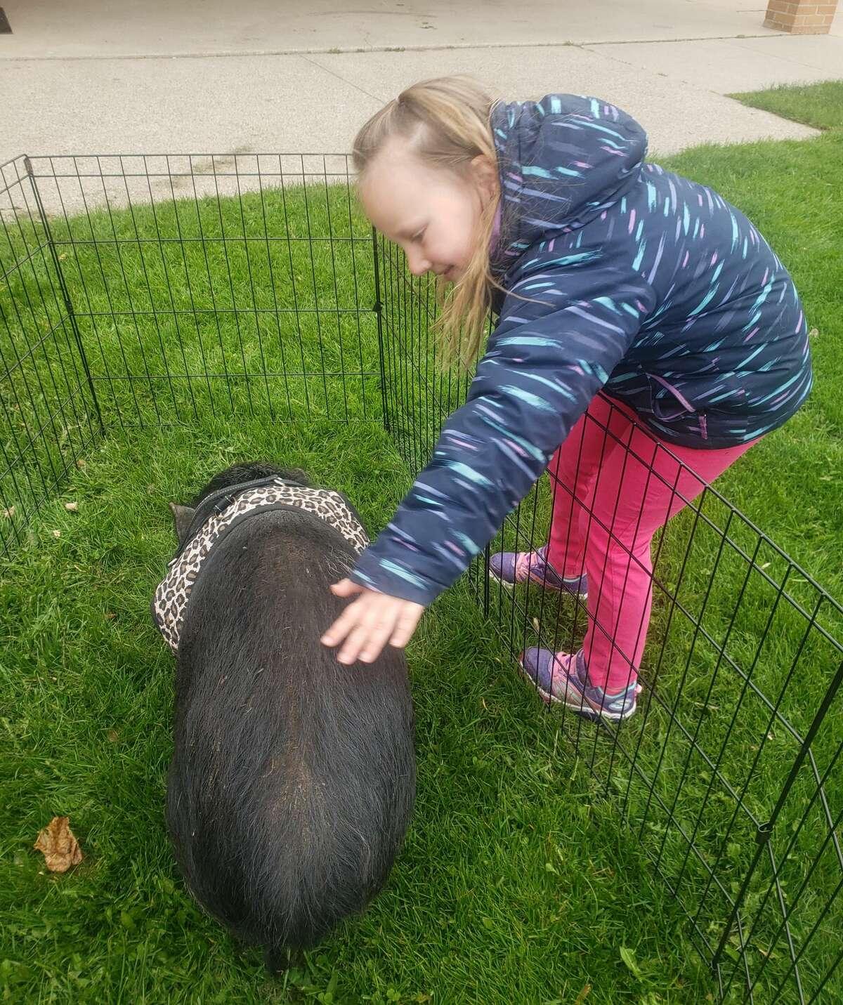 Students of Trinity Lutheran School pet a bunny as part of Macy Godzina's birthday party on Monday. (Courtesy photo)