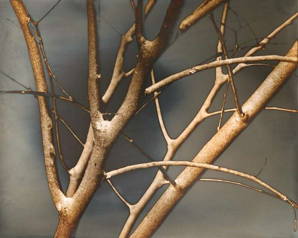"""""""Redbud Sapling in Winter"""" by Destiny Kwas placed second for Best of Show in LCCC's annual student art exhibit."""
