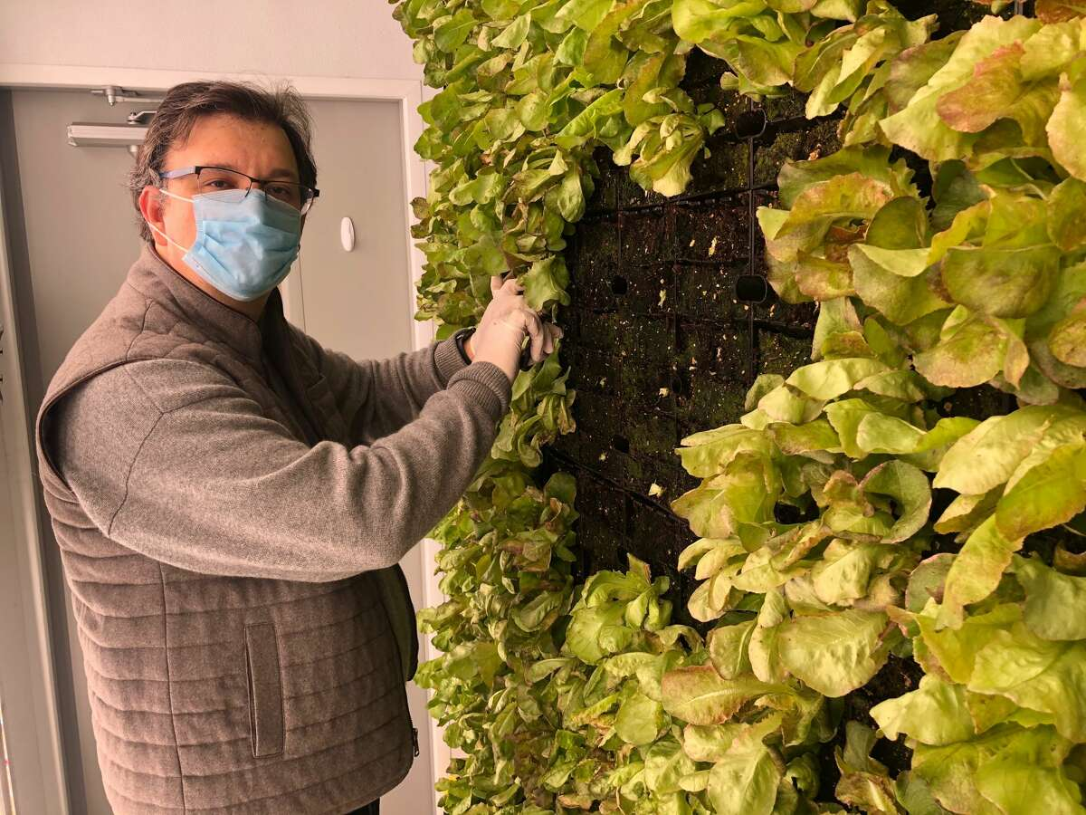 John Lekic is the chef and owner of Farmers & Chefs in Poughkeepsie and vertically grows his own produce for his restaurant in a shipping container on site. He came across the concept of shipping container farming at an exhibition at the Culinary Institute of America in 2019.
