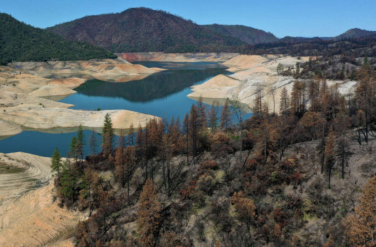 Trees burned by the recent Bear Fire line the steep banks of Lake Oroville, where water levels are low, on April 27, 2021 in Oroville, Calif.