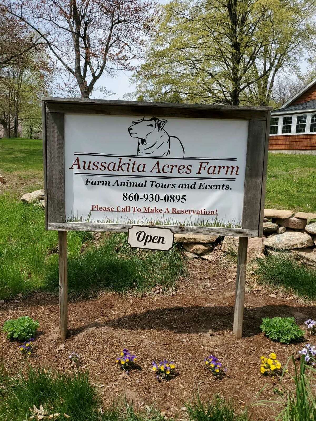 AussakitaAcres Farm in Manchester, Conn. not only has goats on site, it also has alpacas and other farm animals that guests can interact with.