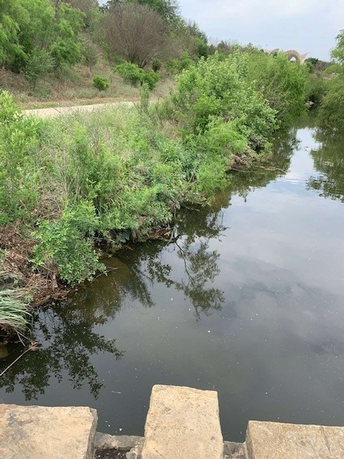 """""""We usually see big accumulations of litter along the Mission Reach after we have a rain event,"""" Kristen Hansen, Watershed and Park Operations Manager, told MySA.com. """"...Our teams are doing a great job addressing the issue, but we need the help of the community to put trash where it belongs."""""""