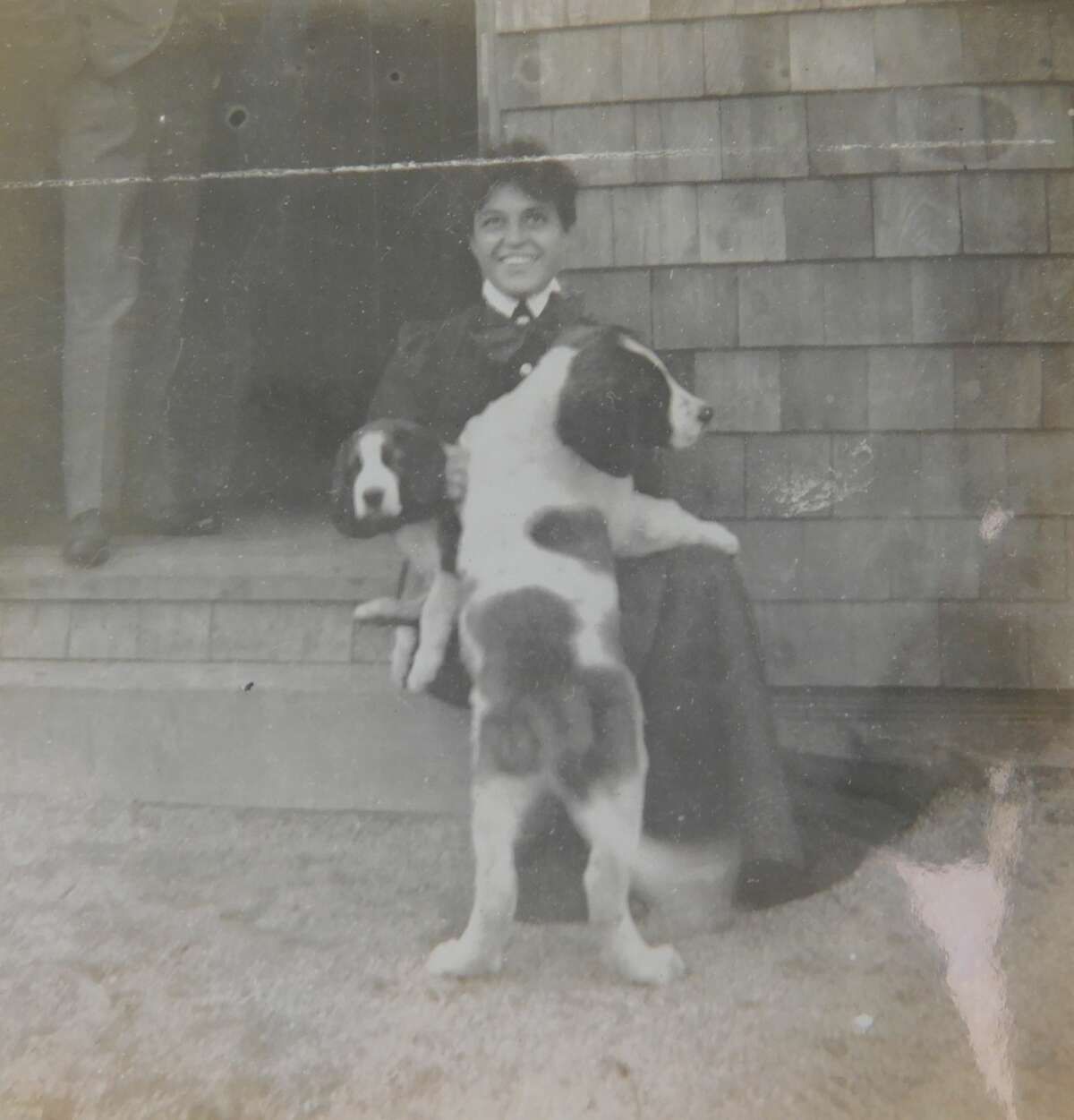 A staff member at Lyndhurst with Frank Gould's St. Bernard puppies, which he showed from the 1890s to early 1900s. By 1901 Frank had more awards for his St. Bernards than any other owner.