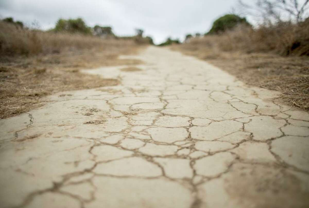 """The grass is brown and the hiking trails are dry and cracked in November 2019 on Sugarloaf Hill in San Mateo. After two consecutive dry winters, most of the Bay Area is in """"extreme drought"""" heading into the dry season."""