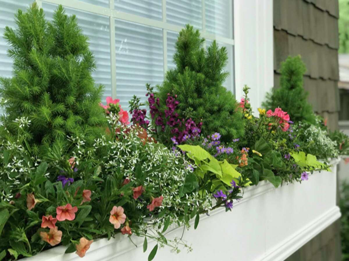 This undated image provided by Contained Creations shows a window box in Richmond, Va. (Contained Creations via AP)