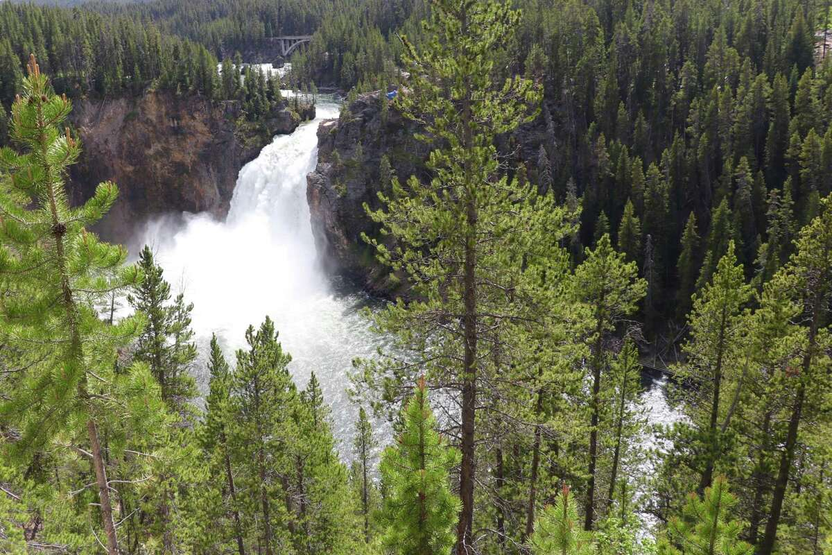 The thundering falls of the Yellowstone River in Yellowstone National Park.