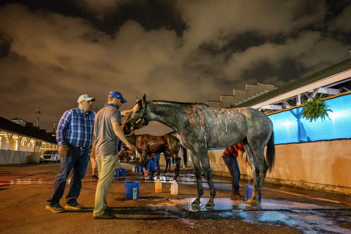 Trainer Brad Cox pats morning line favorite for the Kentucky Derby Essential Quality on the head after his morning bath in the barn area of Churchill Downs Wednesday April 28, 2021 in Louisville, Kentucky. Photo Special to the Times Union by Skip Dickstein