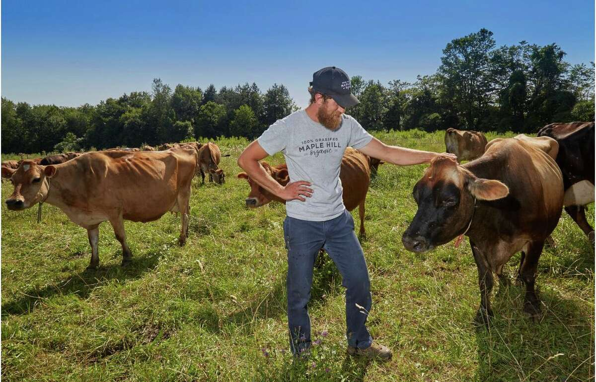 Maple Hill Creamery is the largest grass-fed dairy in the country. It buys pastured milk from around 180 partner farms in New York state, and its products are found nationwide.