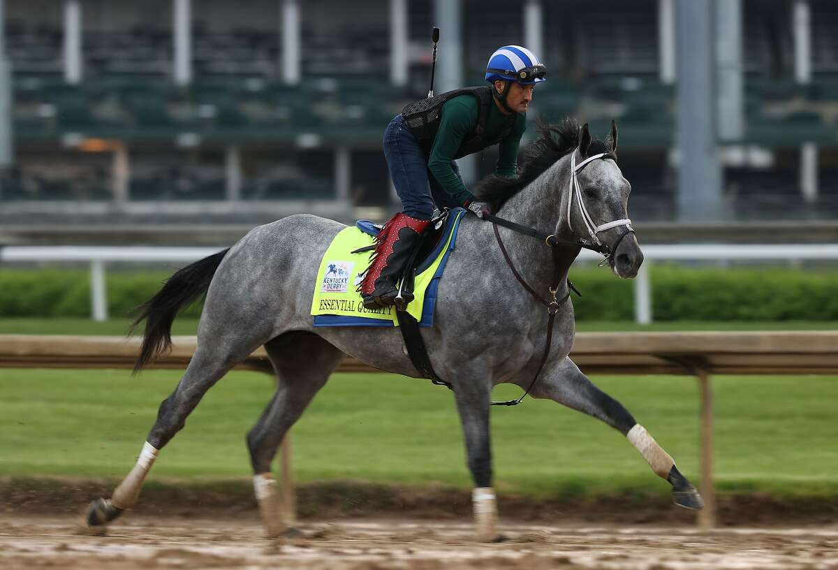 Essential Quality is the morning line favorite for the Kentucky Derby, which will be run Saturday. The NBC broadcast begins at 3 p.m.