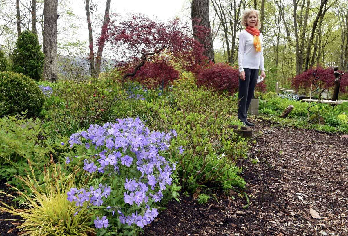 Susan Anton is photographed in her garden behind her home in Woodbridge on April 29, 2021. The purple flowers in the foreground is the perennial phlox divaracata.