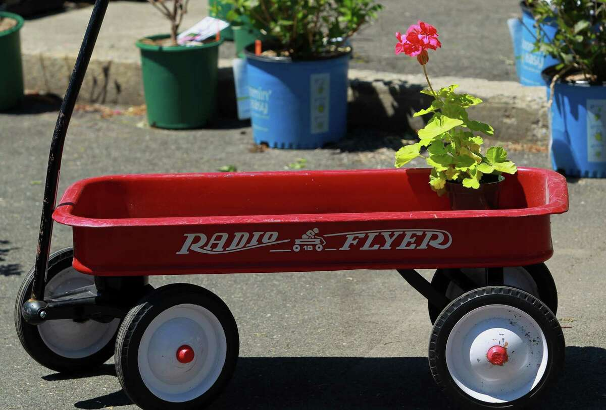 A plant sits in a Radio Flyer Wagon during the Greenwich Botanical Center's annual May Gardeners Market in Greenwich, Conn., on Saturday May 1, 2021. The event had dozens of the wagons for guests to carry their plants and veggies.