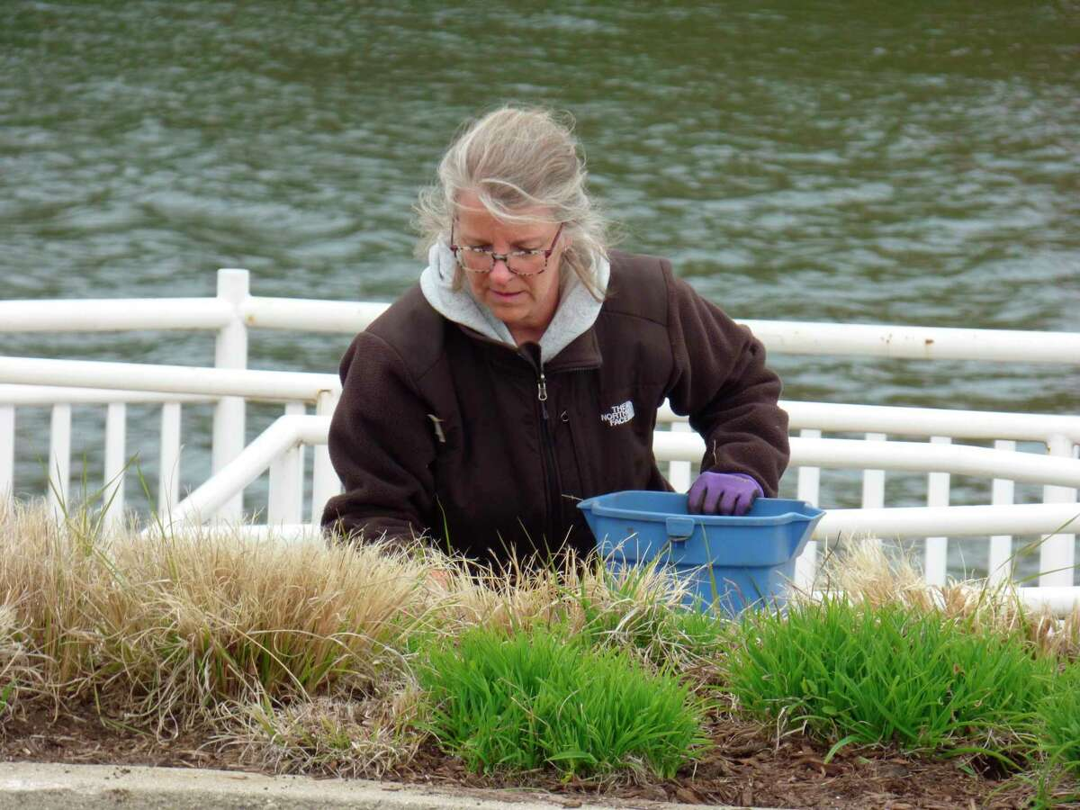 Kelly Greve removes weeds from a garden plot located behind the old Chamber of Commerce building on US 31. Greve is a member of Manistee Proud, a community organization is looking to clean up areas along the Riverwalk. (Scott Fraley/News Advocate)