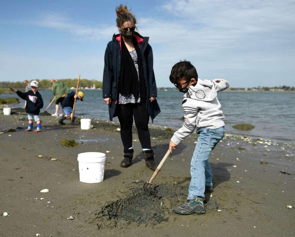 Byram's Dora Ramos and her son, Antonio Ramos, 5, dig for shellfish during a shellfishing demonstration on the beach at Greenwich Point Park in Old Greenwich, Conn. Sunday, May 2, 2021. The Greenwich Shellfish Commission hosted an informative and interactive event for both children and adults interested in fishing for clams, oysters, and mussels.
