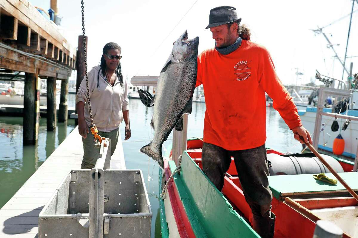 """Joshua Gift and Erica Clarkson unload their catch of salmon from the fishing boat """"Doris"""" at H&H Fish in Santa Cruz, after the beginning of the season this month. The commercial California salmon season has been strictly curtailed this season to protect wild salmon that go back upriver to spawn, yet warm water temperatures in their spawning areas might kill off the eggs this year."""