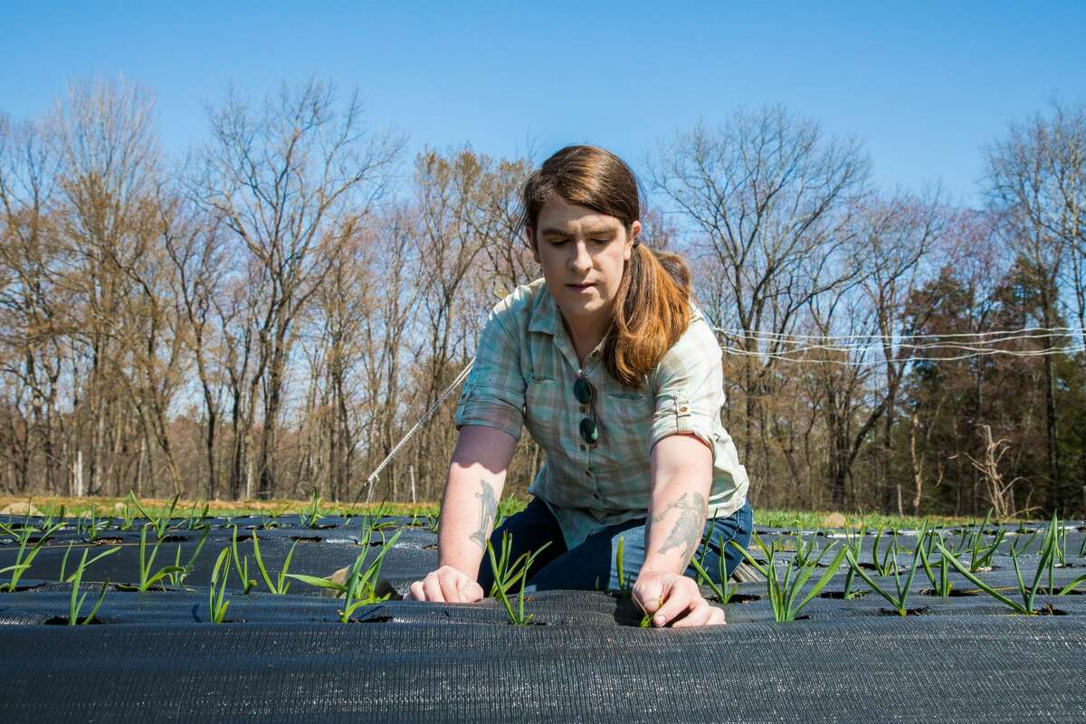 """""""We're seeing this almost rural gentrification happening,"""" says Jayne Henson, who has used creative means to find affordable land for her farm, TransGenenerational Farm, like bartering for acreage to grow upon. """"The issue of development in the Hudson Valley has always been a problem for farmers, but it's becoming more and more exacerbated with property values and everything just skyrocketing to where rural folks who live in the area can't really afford it."""""""