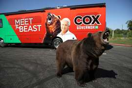 A 1,000 pound bear opens its mouth in front of California republican gubernatorial candidate John Cox's campaign bus during a campaign rally at Miller Regional Park on May 04, 2021 in Sacramento, California.