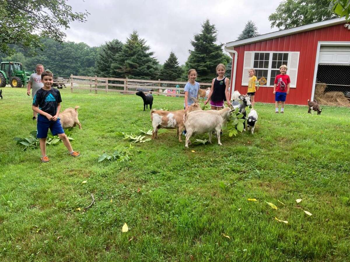 Cheshire Hollow Farm Camp only takes six campers per week during its summer sessions. The camp allows kids to explore farm life and hang out with animals.