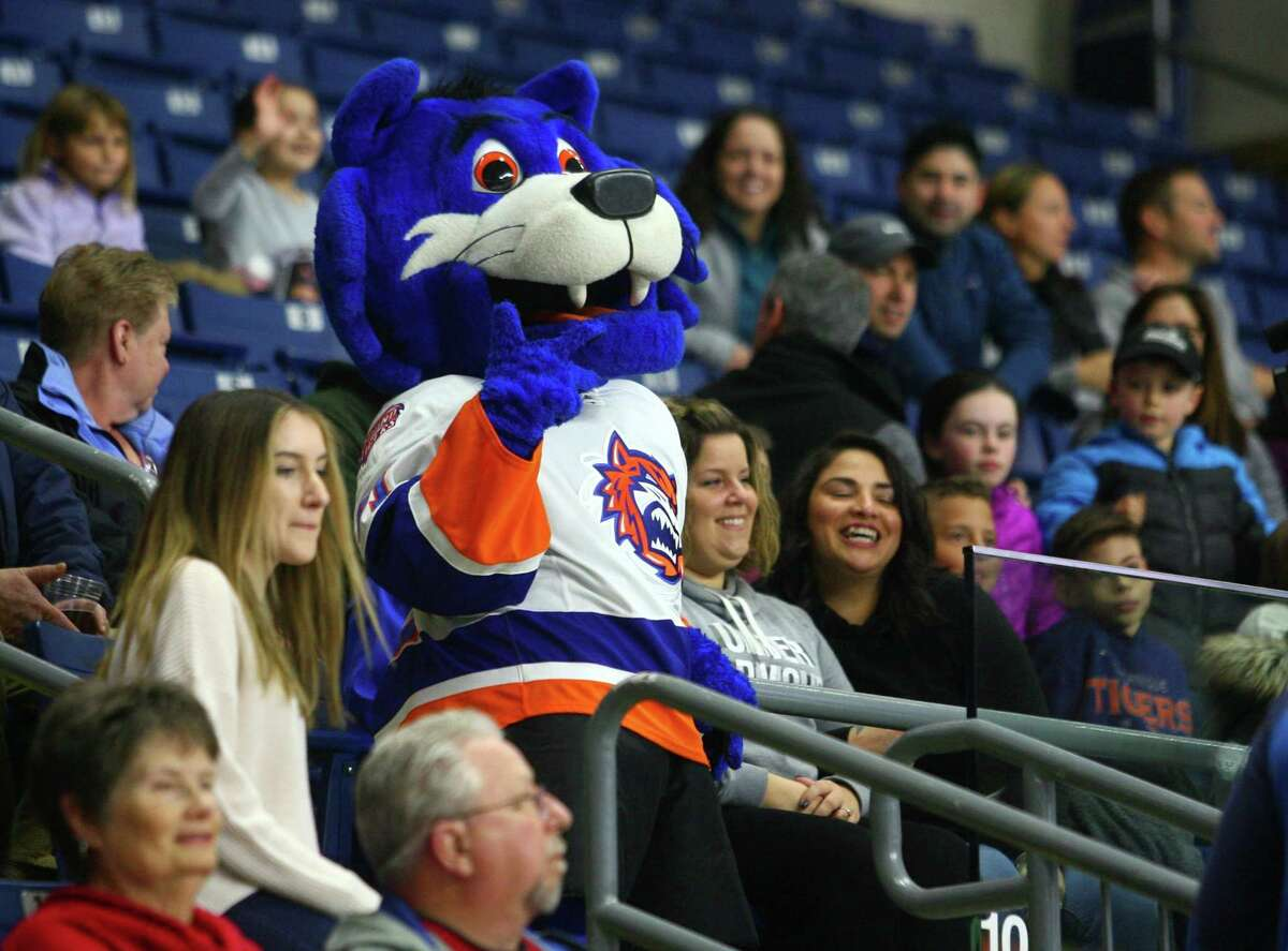 AHL hockey action between the Sound Tigers and Providence at the Webster Bank Arena in Bridgeport, Conn. on Saturday Dec. 1, 2018.