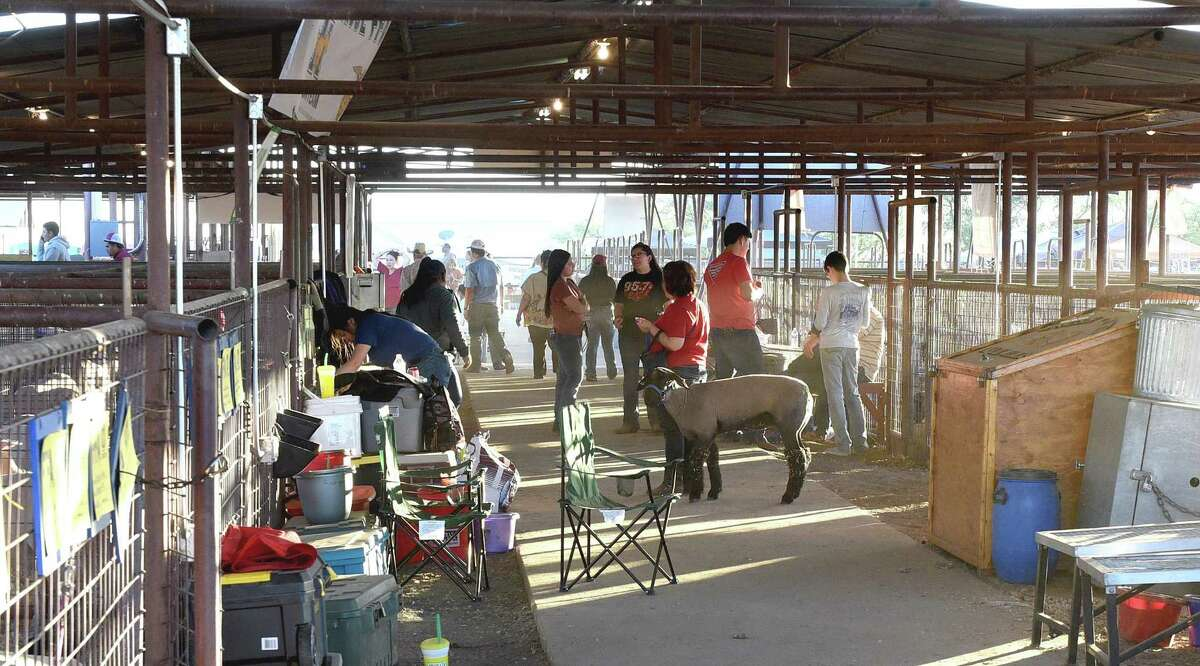 Students and their families get ready to exhibit their livestock and poultry, Tuesday, Feb. 25, 2020, as they prepair for the LIFE Fair at the LIFE grounds.