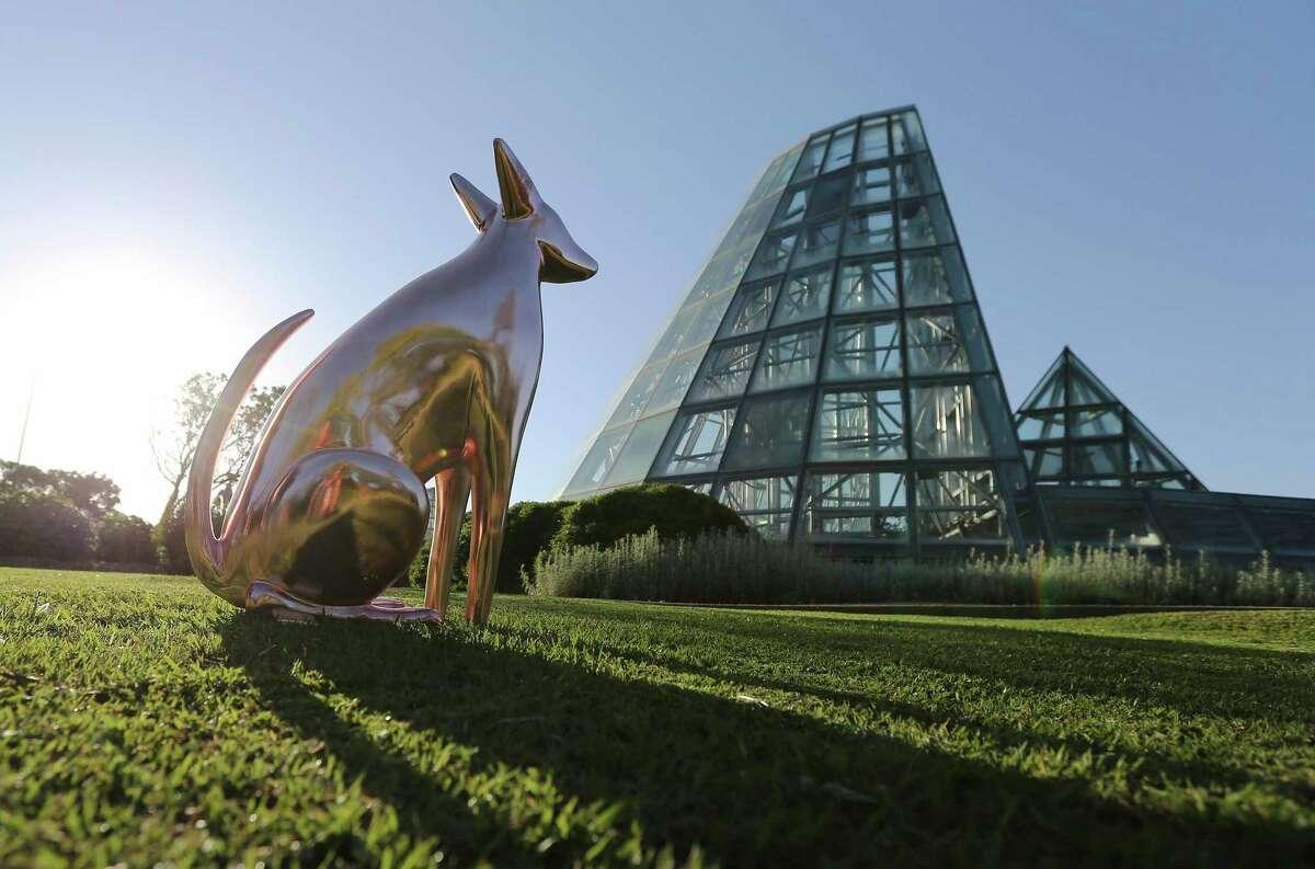 Una estatua de un perro calvo mexicano, una raza que le gustaba a Frida Kahlo, es parte de