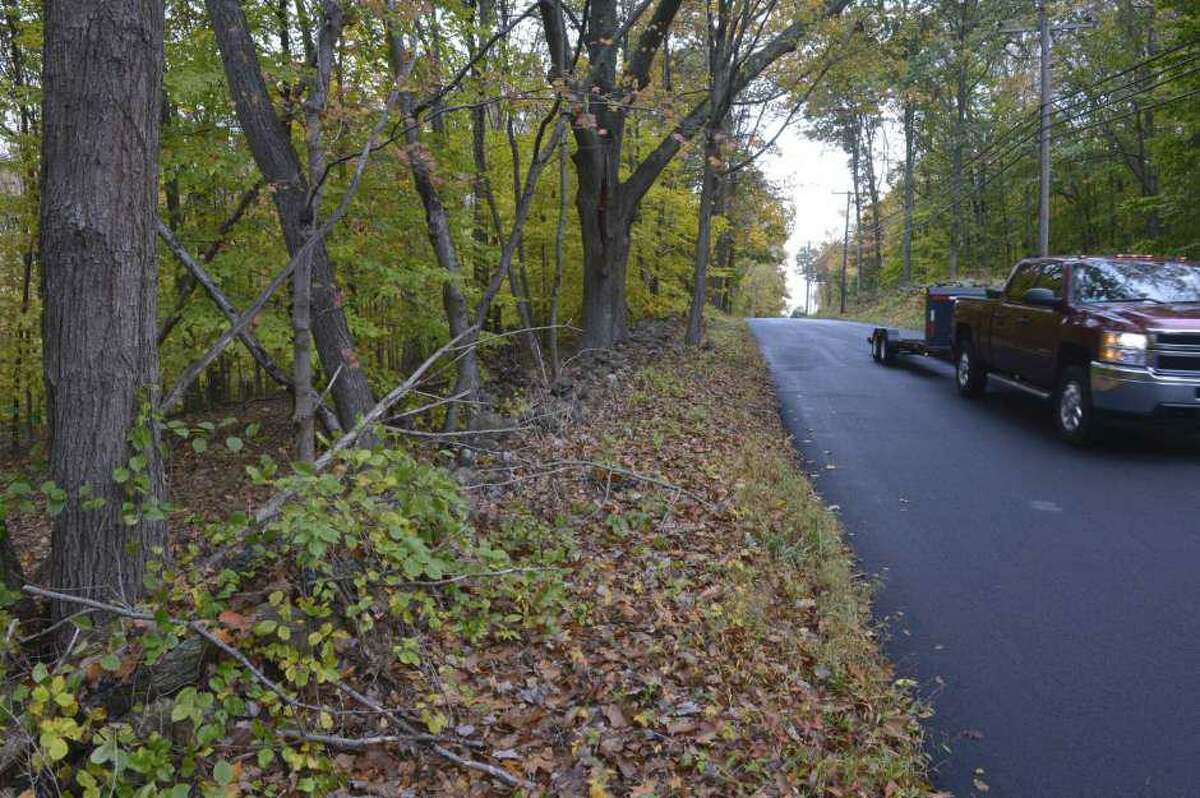 Newtown and the Newtown Forest Association have purchased 20 acres on Boggs Hill Road to preserve as open space.