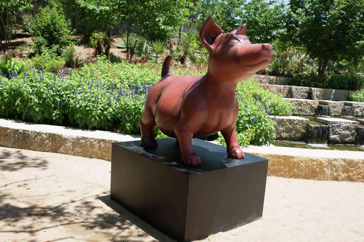 Un adelanto del Oasis de Freda Kahlo en el Jardín Botánico de San Antonio