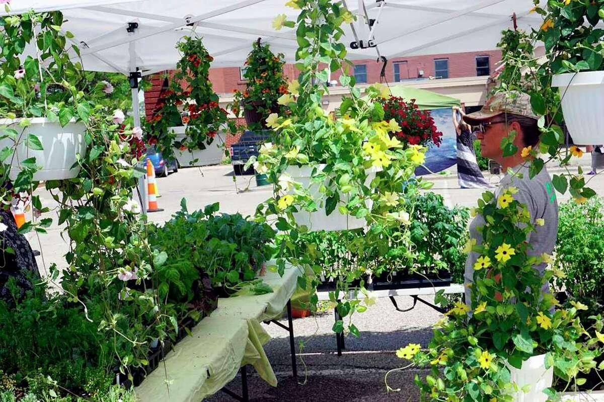 Flowers are sold during last year'sBig Rapids Farmers' Market. (Pioneer files/Joe Judd)