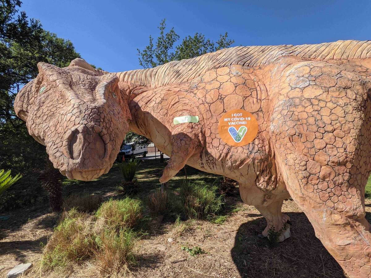 Arky the Acrothanosaurus is doing his part to lower COVID-19 cases in San Antonio.
