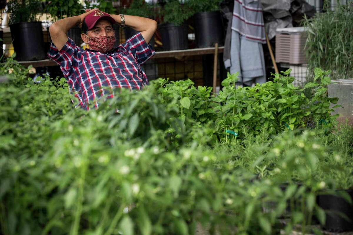 Diego Perez sits in his booth filled with plants at The Houston Farmer's Market Monday, May 3, 2021 in Houston. Construction on the revamped site is finished and vendors have begun moving in. The location will also include restaurants and a green space next to the market.