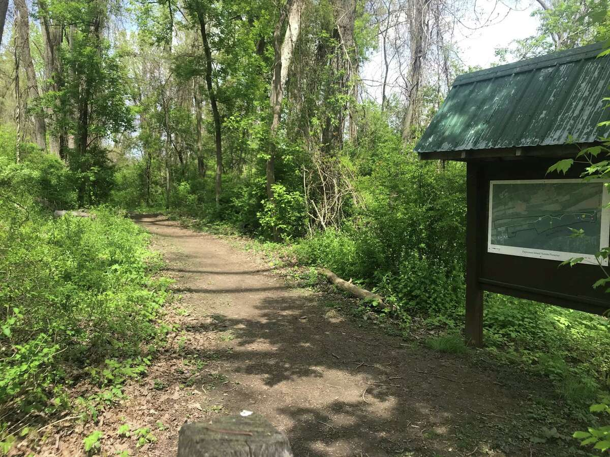 A trail in Papscanee Island Nature Preserve headed north from the preserve parking lot off Staats Island Road in Schodack, N.Y.