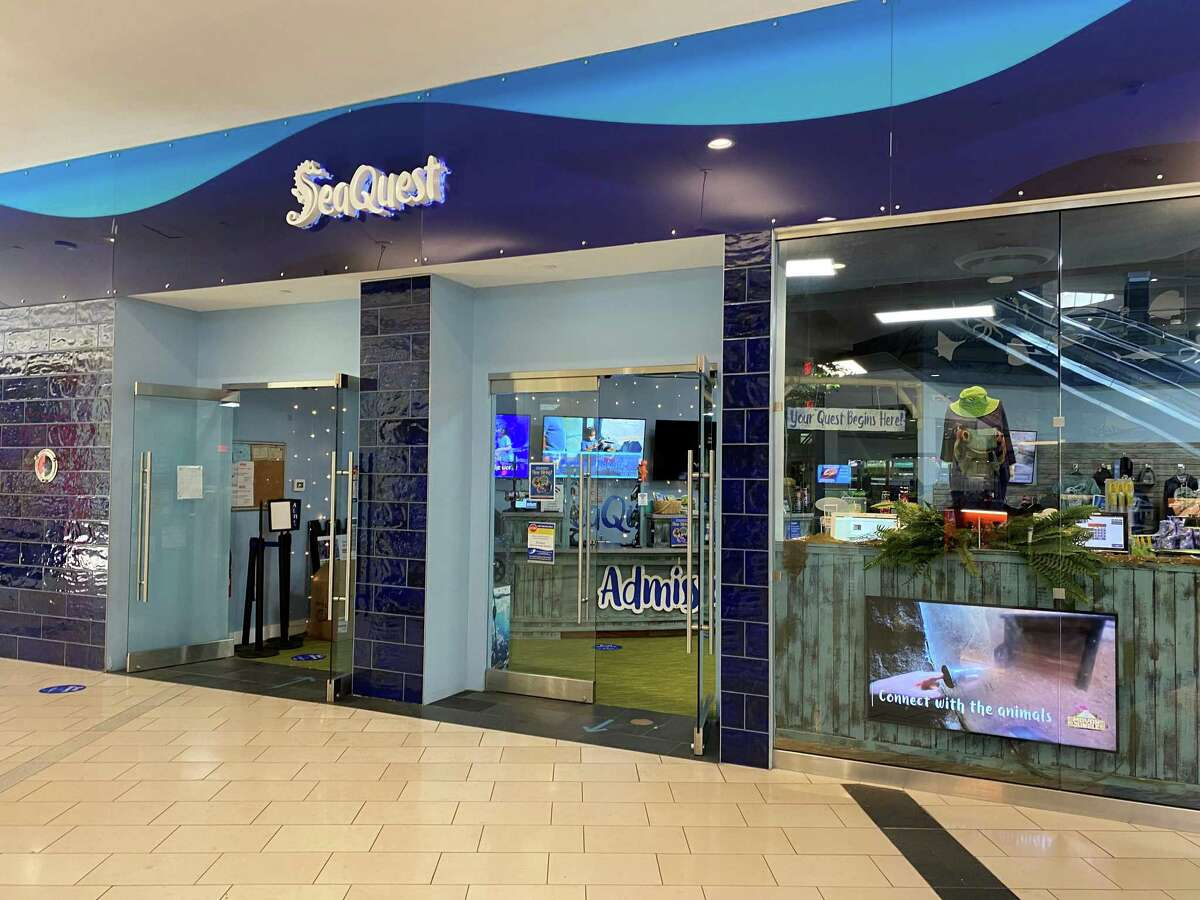 The SeaQuest interactive aquarium at Westfield Trumbull recently received four non-compliance citations from a USDA animal welfare inspection.