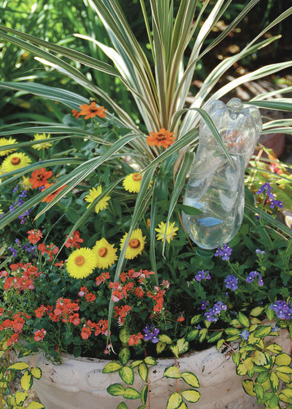 Water or wine bottles can be combined with commercial products to help regulate the flow of water to container gardens while away on vacation.