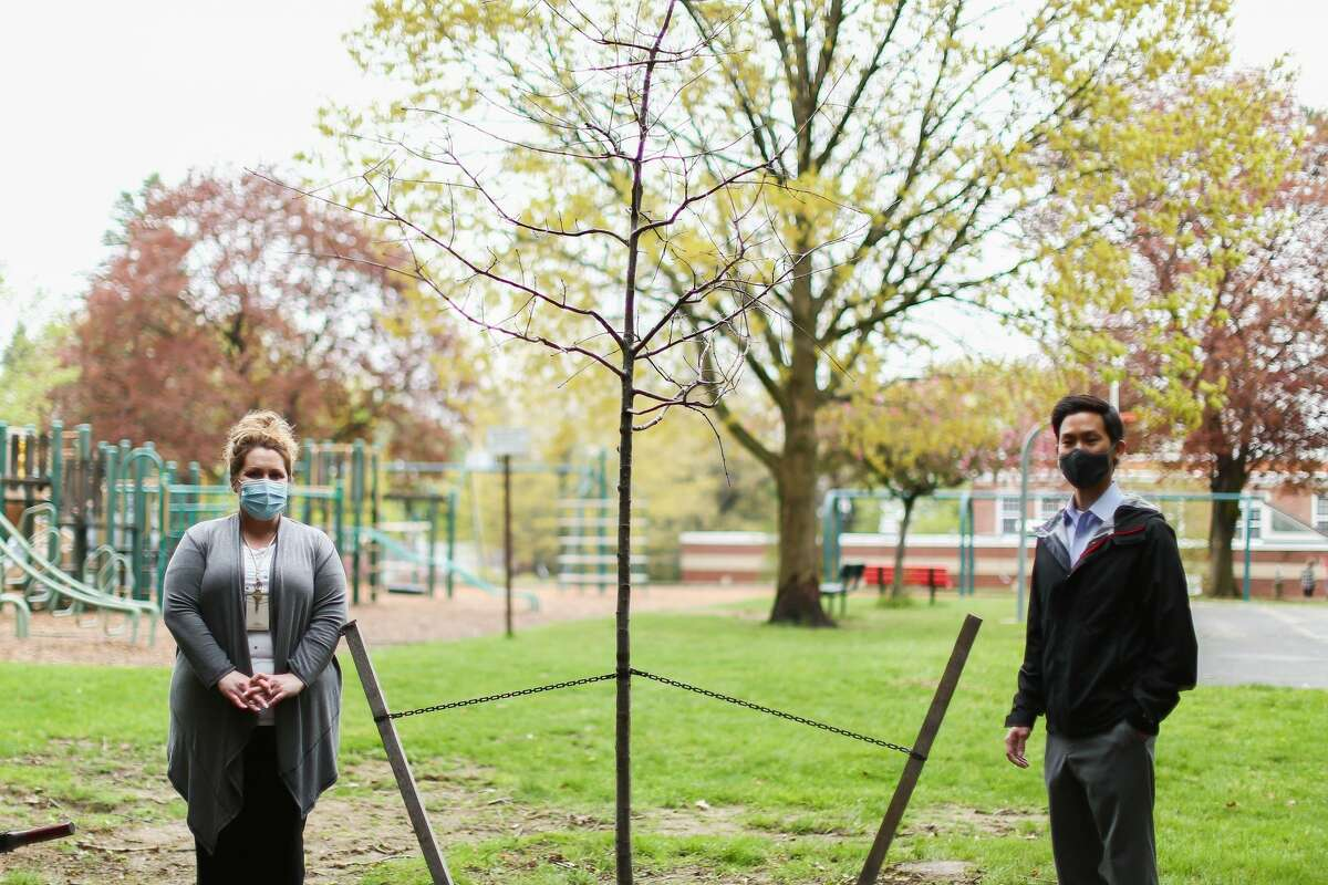 At Loudonville Elementary School in North Colonie: Dr. Paul Hyun of Albany Braces, Abbey North, principal, stand near a planted tree.